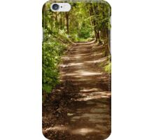 Nature Reserve Konigswinter, Germany iPhone Case/Skin