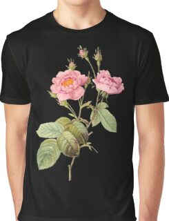Pink rose ll Graphic T-Shirt