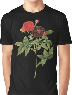 Dark red rose Graphic T-Shirt