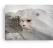 Soft and white like snow with a drop of golden sun Canvas Print