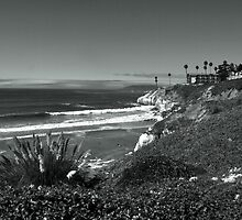 View of the tide - low tide - Pismo Beach by Nyal Bennett