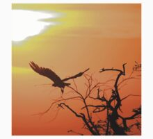 White-backed Vulture - Flying into the Sun. Kids Clothes