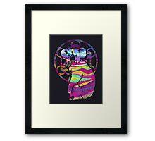Enlightened Koala  Framed Print