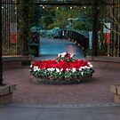 It Looks A Lot Like Christmas by BGSPhoto
