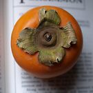Persimmon by Tom McDonnell