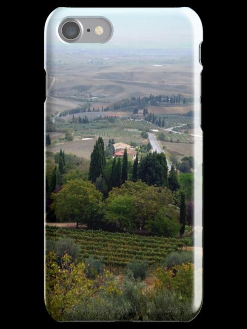 Pienza Landscape by Mui-Ling Teh