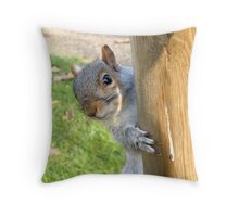 Peek-a-Boo! (Self Portrait in the Eye) Throw Pillow