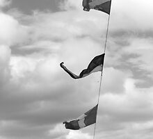 Flags, Royal Yacht Britannia, Edinburgh by Robert Steadman