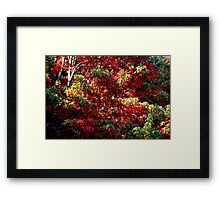 Its a Red Jungle Out There Framed Print