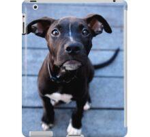 Duke iPad Case/Skin