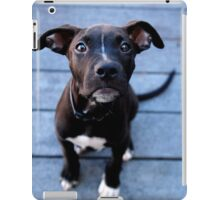 Duke iPad Case/Skin