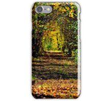 In a Secret Place iPhone Case/Skin