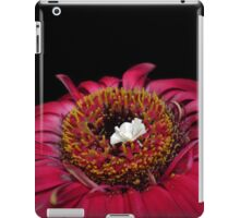 Little White Peacock in a Field of Colour iPad Case/Skin