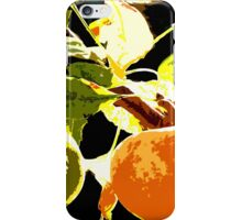 DAYS OF THE FRUIT iPhone Case/Skin
