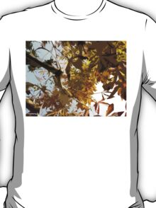 GAZING INTO THE AUTUMN TREES T-Shirt