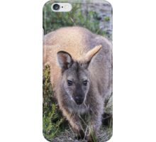 Lovely Wallaby iPhone Case/Skin