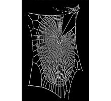 A Large Illustration Of A Spider's Web Photographic Print
