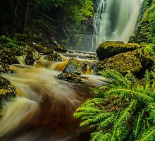 Mathinna Falls, north-eastern Tasmania by Nic Haygarth