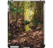 Bellbird Creek   Dungog Australia  iPad Case/Skin