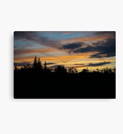 Forest Sunset Canvas Print