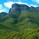 Bluff Knoll by Penny Smith