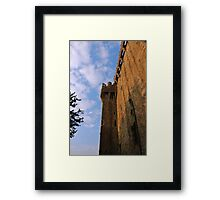 Blarney Castle Wall Framed Print