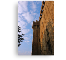 Blarney Castle Wall Canvas Print