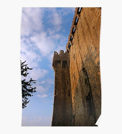 Blarney Castle Wall Poster
