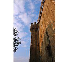 Blarney Castle Wall Photographic Print