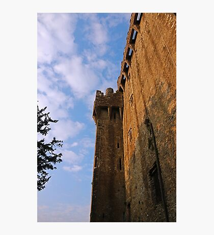 Blarney Castle Wall Photographic Print
