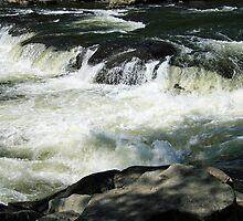 Ohiopyle Falls by Cora Wandel