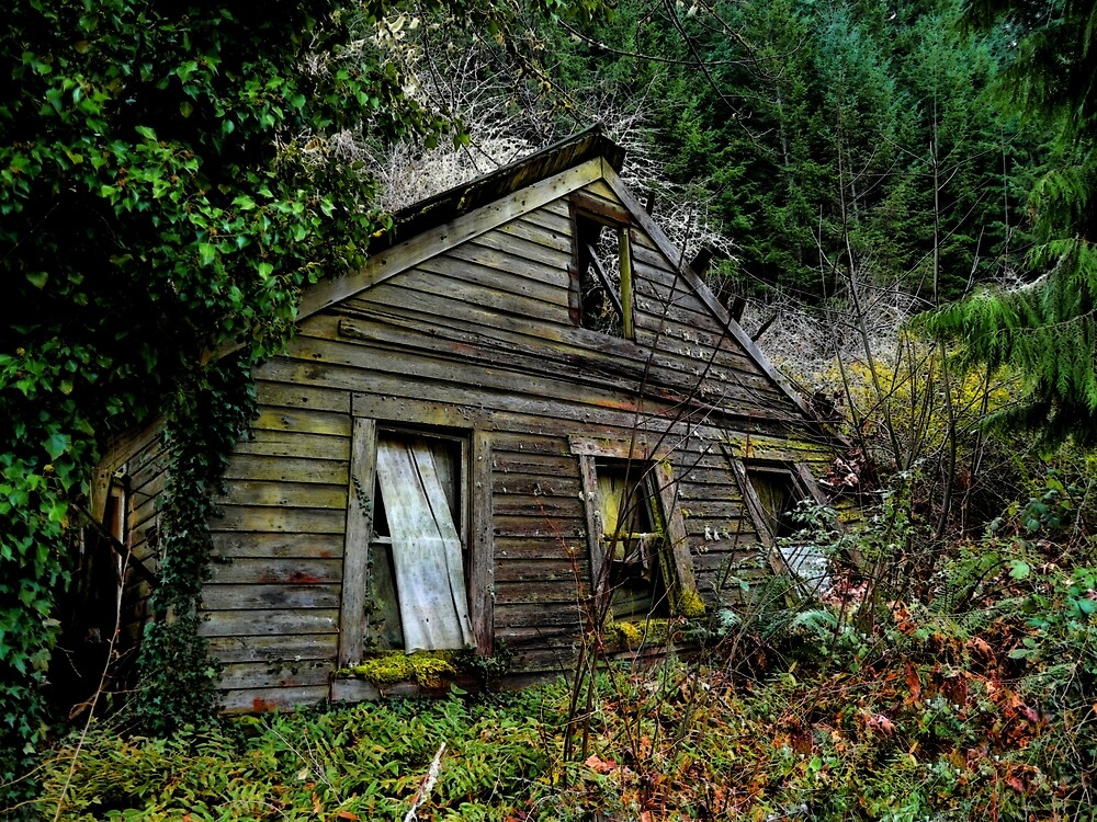 This Old House by Charles & Patricia   Harkins ~ Picture Oregon