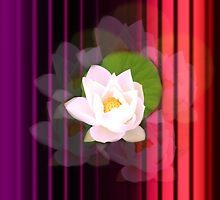 Red Stripe and Lotus flower by Nandika-Dutt
