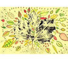 Autumn Inspired Leaves Photographic Print