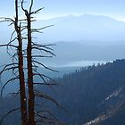 View from Maggie's Peaks (South Peak) by Jared Manninen