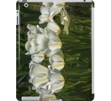 Aglow iPad Case/Skin