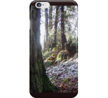 "forest ""troll"" in the snow iPhone Case/Skin"