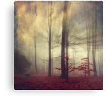 Little Red Trees - Foggy Forest Canvas Print
