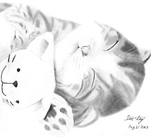 Sleeping Cat by Mui-Ling Teh