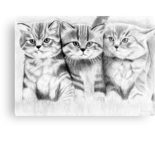 Pussy Cats Metal Print