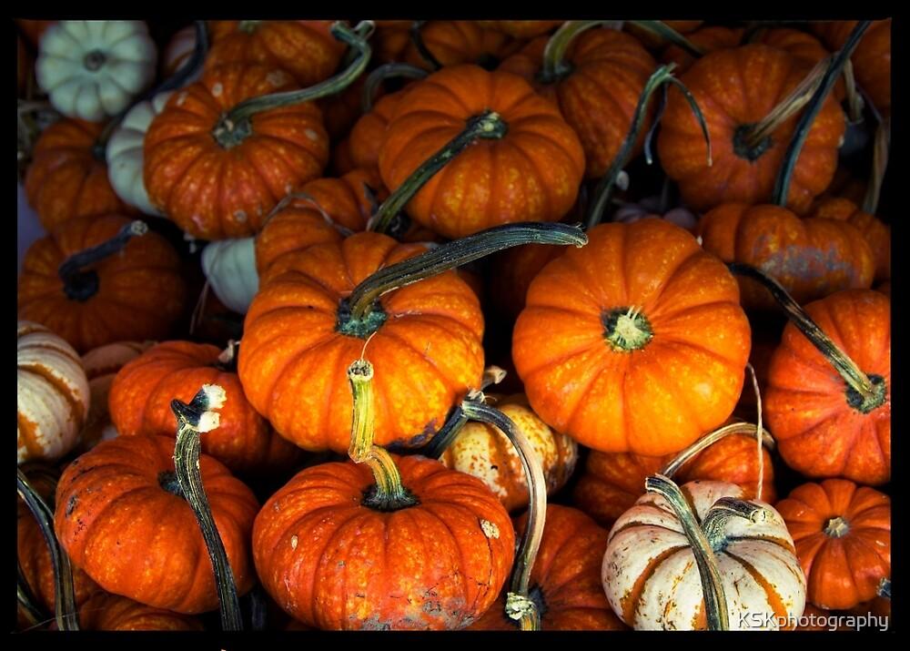 Pumpkins, pumpkins everywhere by KSKphotography