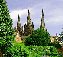Lichfield Cathedral from the Garden by Rod Johnson