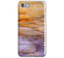 Colorful Petrified Wood Abstract iPhone Case/Skin