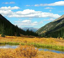 Autumn Lake in the Rockies by Amy McDaniel