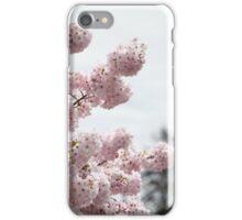 Cherry Blossom 2 iPhone Case/Skin