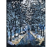 Winter ice and snow. Trees in snow.  Photographic Print
