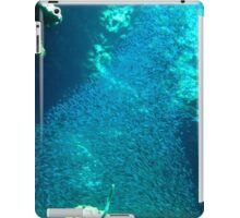 Tornado of Silver Fish iPad Case/Skin