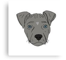 Pit bull Pup Canvas Print