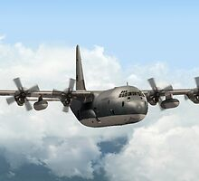 RAAF C-130E Hercules by Walter Colvin