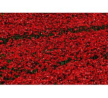 Poppy fields of remembrance for WW1 at Tower of London Photographic Print